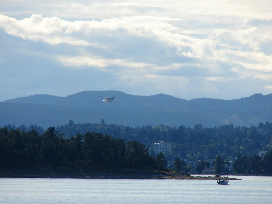 A sea plane comes in for a landing in Nanaimo, BC